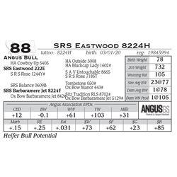 SRS Eastwood 8224H