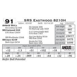 SRS Eastwood 8210H