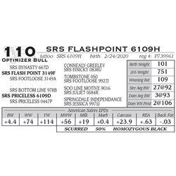 SRS FLASHPOINT 6109H