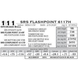SRS FLASHPOINT 6117H