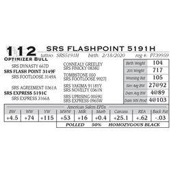 SRS FLASHPOINT 5191H