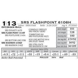 SRS FLASHPOINT 6106H