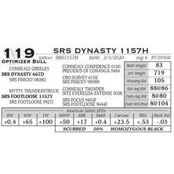 SRS DYNASTY 1157H