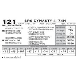SRS DYNASTY 4174H