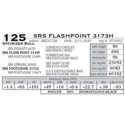 SRS FLASHPOINT 3173H