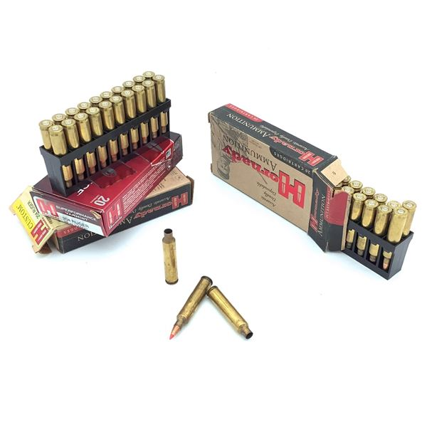 204 Ruger Assorted Casings and Ammunition