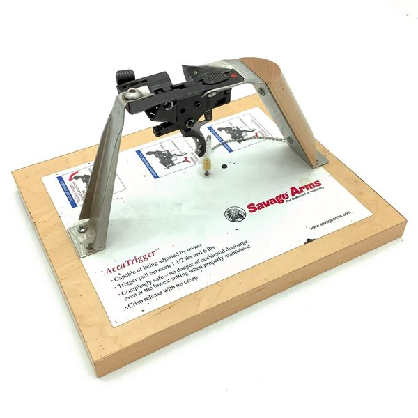Savage Arms AccuTrigger Display