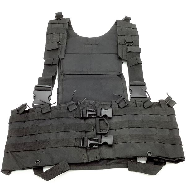 Vism AR Chest Rig, New