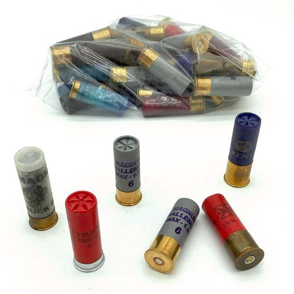 Assorted Loose 12 Ga Ammunition - 39 Rnds