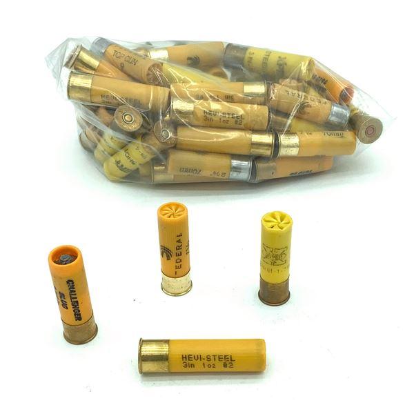 Assorted Loose 20 Ga Ammunition - 53 Rnds