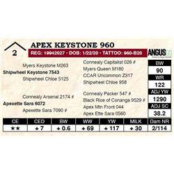 Apex Keystone 960