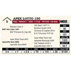 Apex Lotto 150