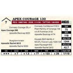 Apex Courage 130