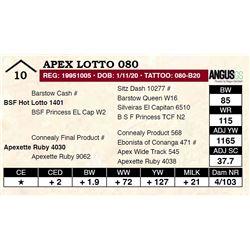 Apex Lotto 080