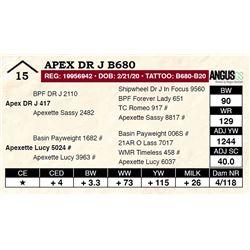 Apex DR J B680