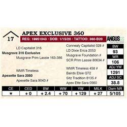 Apex Exclusive 360