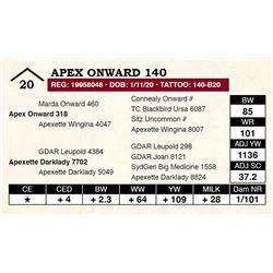 Apex Onward 140