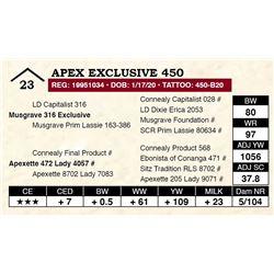 Apex Exclusive 450