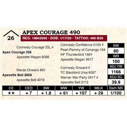Apex Courage 490