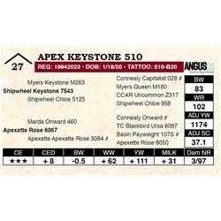 Apex Keystone 510