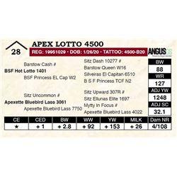 Apex Lotto 4500