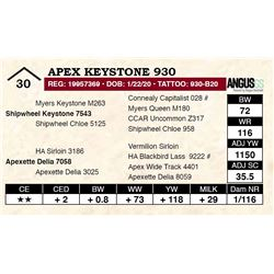 Apex Keystone 930
