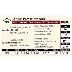 Apex Pay Dirt 580