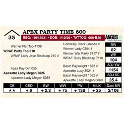 Apex Party Time 600