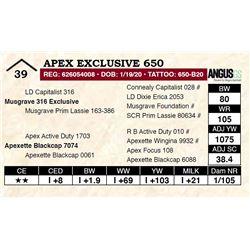 Apex Exclusive 650
