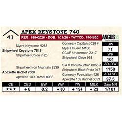 Apex Keystone 740