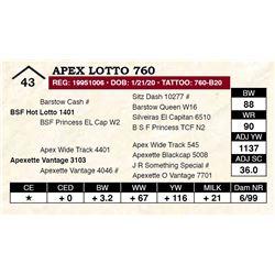 Apex Lotto 760