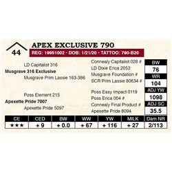 Apex Exclusive 790