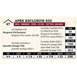Apex Exclusive 830