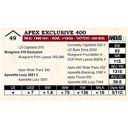Apex Exclusive 400