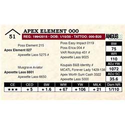 Apex Element 000