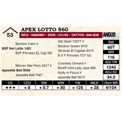 Apex Lotto 860