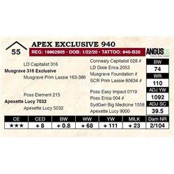 Apex Exclusive 940