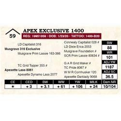 Apex Exclusive 1400