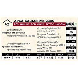 Apex Exclusive 2300