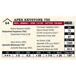 Apex Keystone 750