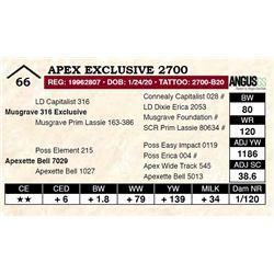 Apex Exclusive 2700