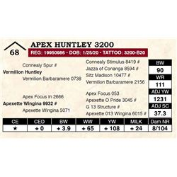 Apex Huntley 3200