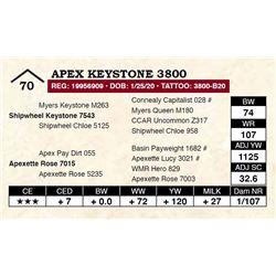 Apex Keystone 3800