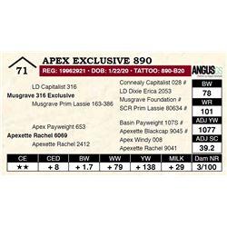 Apex Exclusive 890