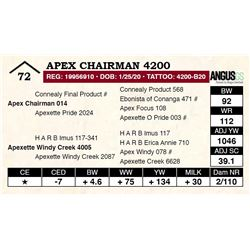 Apex Chairman 4200