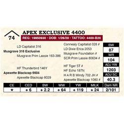 Apex Exclusive 4400