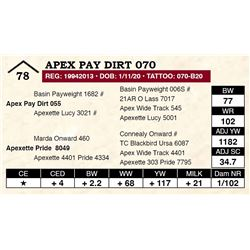 Apex Pay Dirt 070
