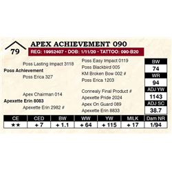 Apex Achievement 090
