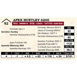 Apex Huntley 6200