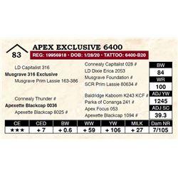 Apex Exclusive 6400
